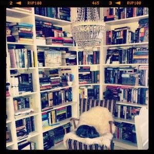 bøkerogpus